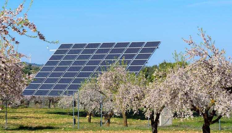 Fördelen med att ha egna solceller på Gotland